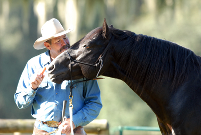 understanding horse behavior with Pat Parelli